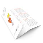 Brochure_Divorce