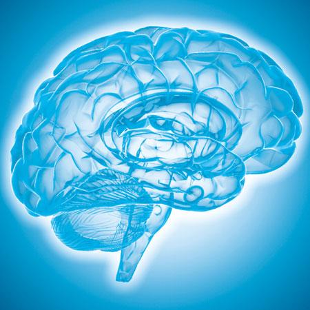 thumb-mon-cerveau
